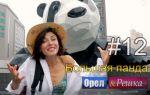 Выпуск 12 — Большая панда (442)