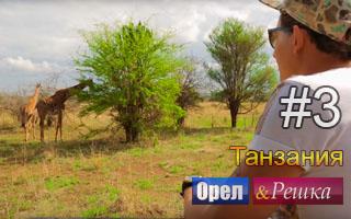 Смотреть 3 выпуск в Танзании